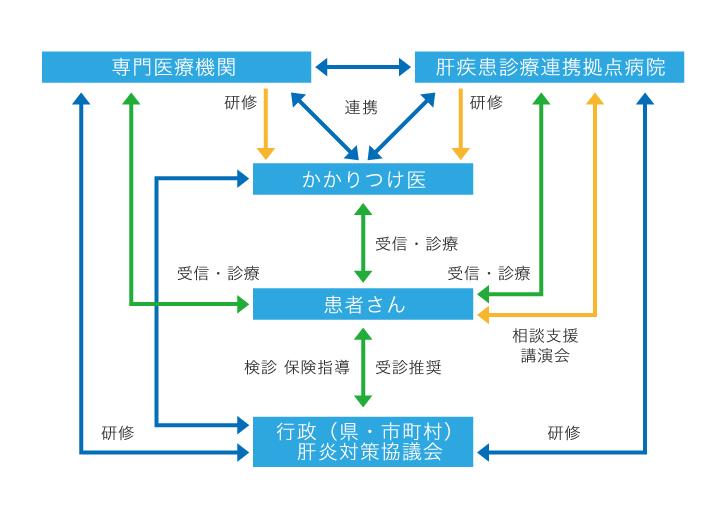 沖縄県肝炎診療ネットワーク図